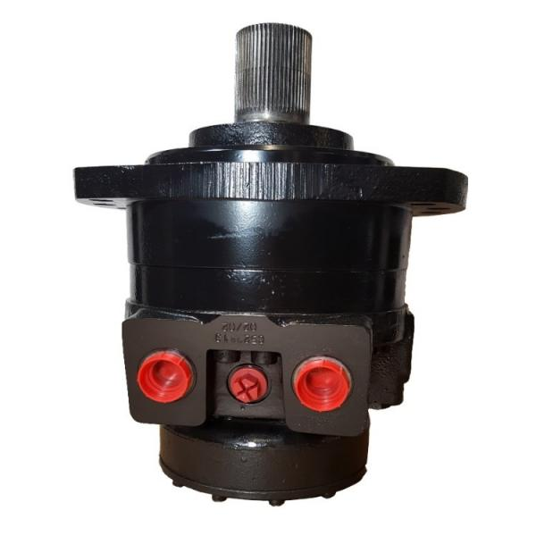 Caterpillar 216B3 1-spd Reman Hydraulic Final Drive Motor #1 image