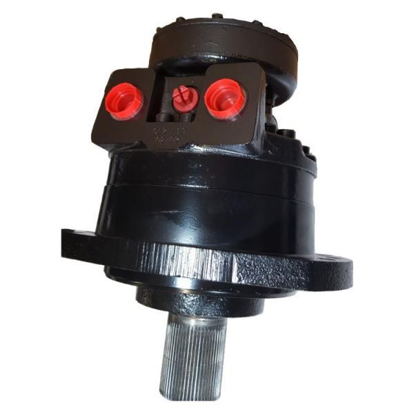 Caterpillar 151-9688 Hydraulic Final Drive Motor #1 image